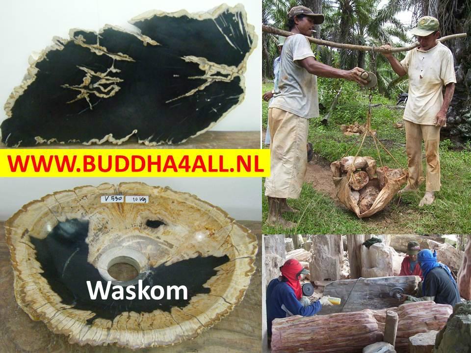 Versteend hout wastafel  Buddha4allnl # Aparte Wasbak_124715