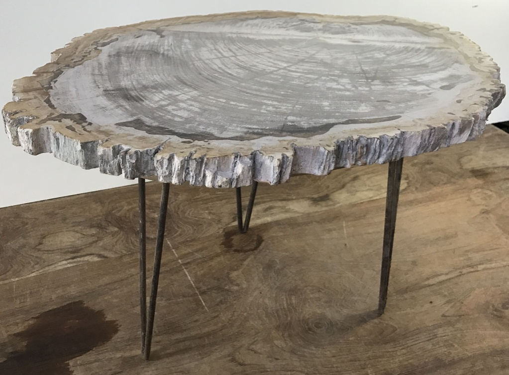 Tafel Versteend Hout : Thijs noldus art of nature versteend hout