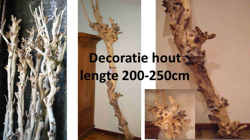 Houten takken decoratie for Boomstam decoratie